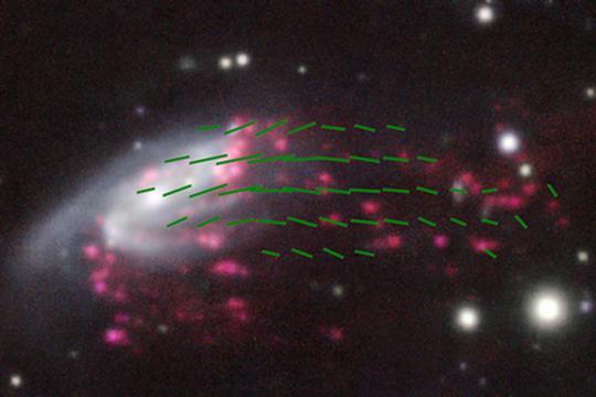 I tentacoli magnetici della galassia medusa JO206