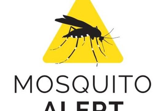 Lotta alle zanzare: approda in Italia MosquitoAlert, l'app che permette ai cittadini di contribuire con un click